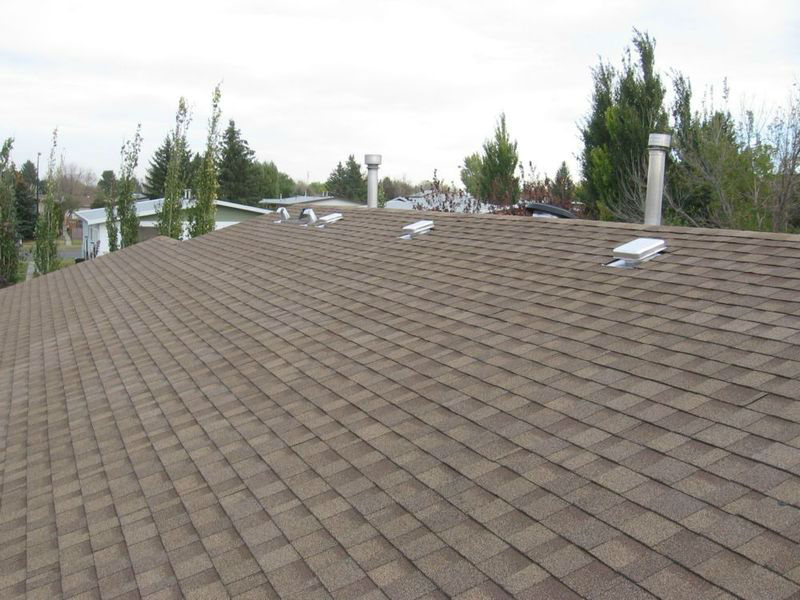 Shingle and flat roof